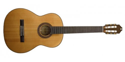 Washburn WC160SW Guitarra Acústica Clásica
